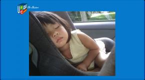 Tex Baby i-Size : Carrefour Siège auto sous surveillance