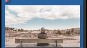 Pension de réversion  Une seule demande en ligne suffit désormais