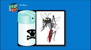 Tiques, moustiques – Bientôt de nouveaux répulsifs