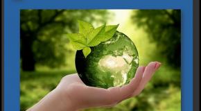Publicité  L'argument «écologique» trop souvent exagéré