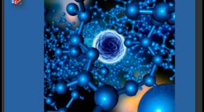 Nanomatériaux  L'opacité nuit à l'évaluation des risques