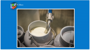 Lait et produits laitiers – L'étiquetage de l'origine non obligatoire